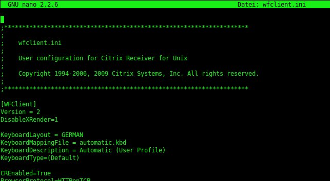 Citrix ICA receiver – black box around mouse-cursor :-( | iSticktoit net