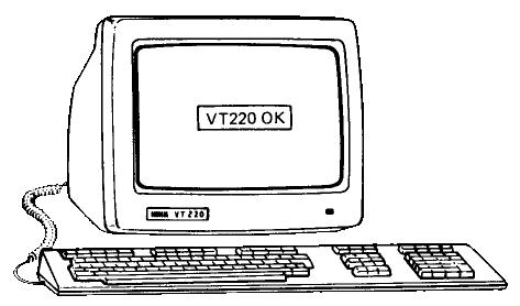 vt220_transparent
